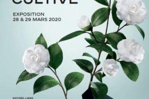 «LA BEAUTÉ SE CULTIVE» L'EXPOSITION SIGNEE CHANEL